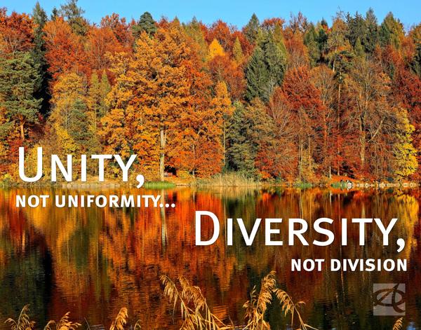 unity-diversity